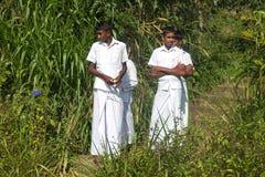 Garçons locaux de jeunes sur la plantation de thé Photos stock