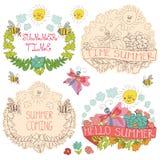Garabatee la etiqueta floral con las mariposas, abejas, sol ilustración del vector