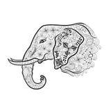 Garabato de la cabeza del elefante ilustración del vector