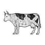 Garabato de la vaca stock de ilustración