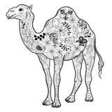 Garabato del camello stock de ilustración