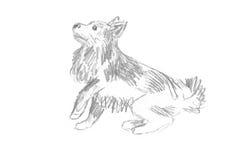 Garabato del perro Imagen de archivo