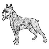 Garabato del perro del boxeador libre illustration