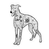Garabato del perro del galgo ilustración del vector