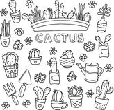 Garabatos del vector del cactus ilustración del vector
