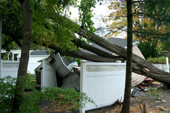 Garage crushed by trees after Hurricaine Super Storm Sandy. A house in Babylon Village, NY has a tree fall on it`s garage during Super Storm Sandy Stock Images