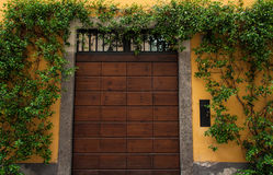 Garage Dooor. A garage door in Italy surrounded by green vines on a yellow wall Stock Photography