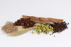 Garam masala , indian spice mix Stock Photography