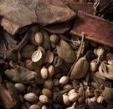 Garam Masala Stock Photo