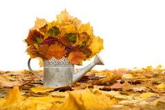 Garant avec des feuilles d'automne sur le blanc photos stock