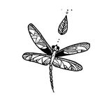 Garatuja da tinta da libélula Imagem de Stock