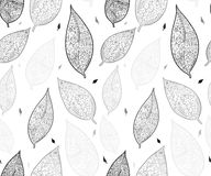 A garatuja textured as folhas Teste padrão sem emenda Foto de Stock