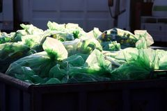 Garbage. In the plastic bag at the afternoon sun Stock Photo
