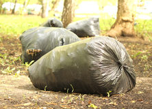 Garbage bags in the clean garden. Garbage bags fool of garbage in the clean garden Stock Images