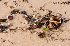 Garbage on the beach Royalty Free Stock Photos
