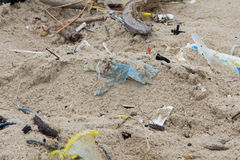 Garbage on the beach. Stock Photos