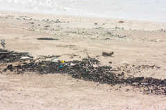 Garbage on the beach Stock Image