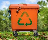 Garbage bin and large ant. Recycled sign on garbage bin and large ant Stock Photos