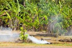 Garbage burning jungle Corn Island Nicaragua Stock Image