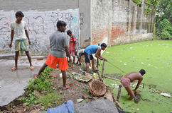 Garbage Cleaning. A group of municipality's labours work to clear waste and garbage from the trash-filled pond at slum area of Kolkata-India Royalty Free Stock Image