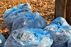 Garbage collection city park Stock Images