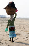 Garbage collector on the beach of Goa Royalty Free Stock Photography