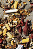 Garbage debris in forests. And meadows expressing lack of respect for nature and the environment Stock Image