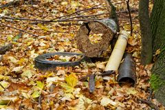 Garbage deposit in the forest on a tree, car tires, metal scrap, components, autumn leaves cover the ground stock image