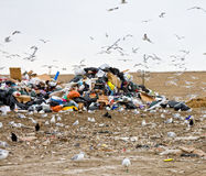 Garbage dump Royalty Free Stock Image