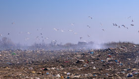 Garbage dump. With a considerable quantity of plastics, packages Royalty Free Stock Images