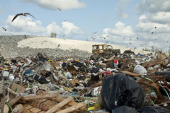 Garbage dump. Nassau's garbage dump with bulldozer Stock Image