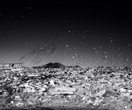 Garbage dump/ easy lunch. Canada scenery Landscape stock images