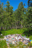 Garbage dump in forest Royalty Free Stock Photos