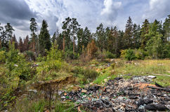 Garbage dump in forest Stock Photos
