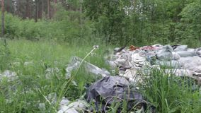 Garbage dump in the forest, environmental pollution, sunny summer day, forest, beautiful green trees. Garbage dump in the forest, environmental pollution, sunny stock video footage