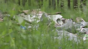 Garbage dump in the forest, environmental pollution, sunny summer day, forest, beautiful green trees. Garbage dump in the forest, environmental pollution, sunny stock footage