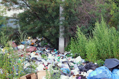 Garbage dump among green trees. And buches at summer day Royalty Free Stock Photography