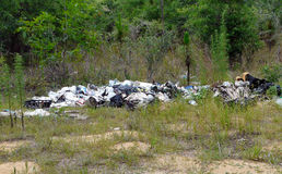 Garbage Dump in Nature. Illegal garbage dump in the woods in central Florida Royalty Free Stock Photo