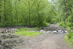 Garbage dump on the road. Spring on the road in the forest garbage dump Stock Image