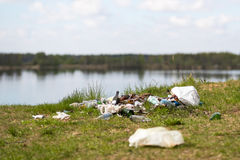 Garbage dump in the woods Stock Images