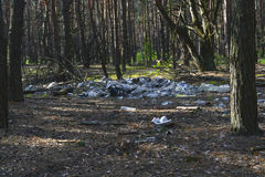 Garbage dump in the woods Stock Photos