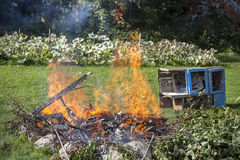 Garbage in fire, garden illegal burn refuse Stock Images