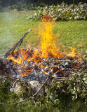 Garbage in fire, garden illegal burn refuse Royalty Free Stock Photos