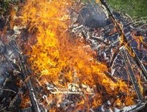 Garbage in fire, illegal garden burning out Royalty Free Stock Photography
