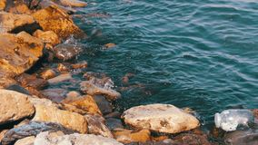 Garbage Floats in the Caspian Sea near the Stones on the Embankment of Baku. The bottle floats in the sea. Environmental pollution stock footage