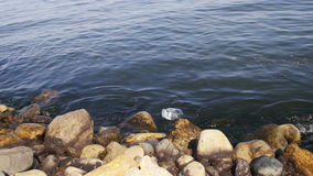 Garbage floats in the Caspian sea near the stones on the embankment of Baku. The bottle floats in the sea. Environmental pollution stock video footage