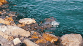 Garbage Floats in the Caspian Sea near the Stones on the Embankment of Baku stock video footage