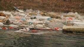 Garbage floats in the water near the shore. Environmental pollution.