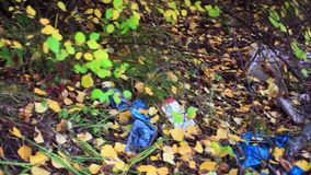 Garbage in the forest in autumn. environmental stock footage