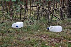 Garbage in the forest Royalty Free Stock Photography